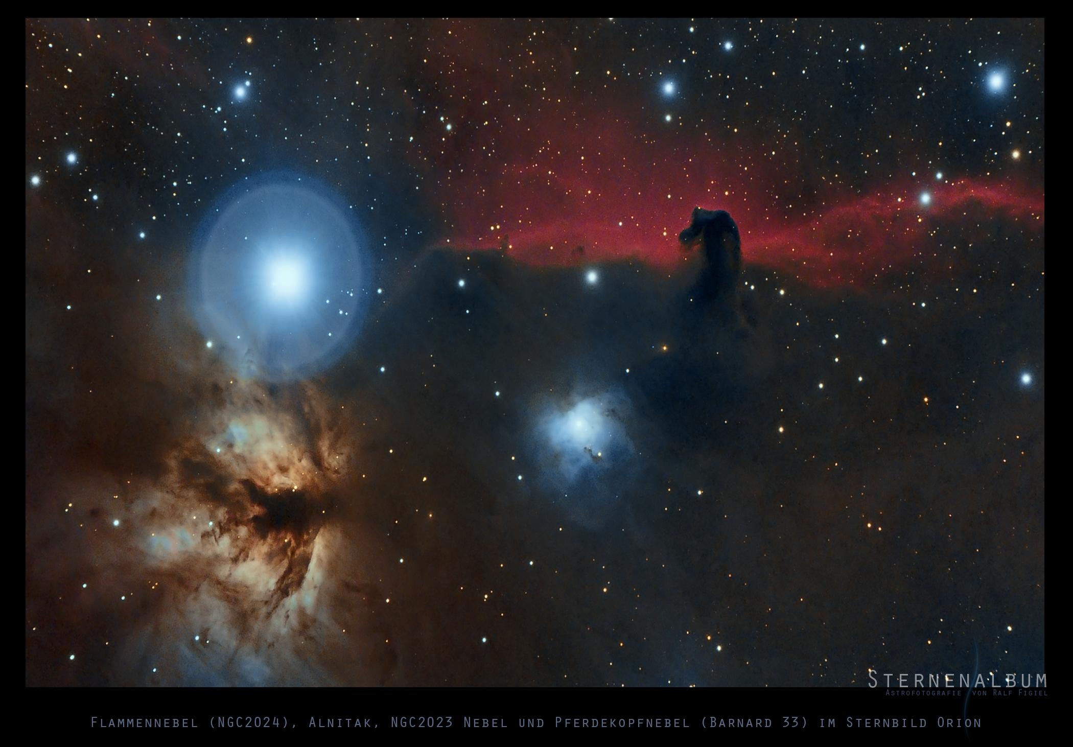 Barnard 33 - Der Pferdekopfnebel mit Umgebung