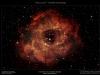 NGC2237 - Der Rosettennebel in Falschfarben